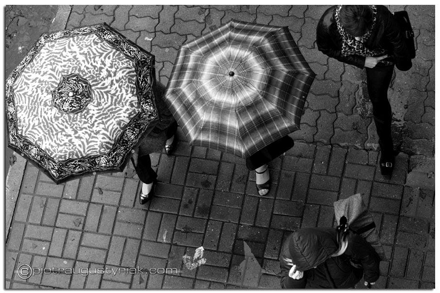 fotograf-plock-11