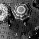 fotograf parasole deszcz ulewa kobiety nogi pogoda aura ulica płock