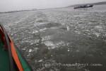 Fotograf włocławek zdjęcia lodolamacze kruszenie lodu na Wisle płock fotoreporter Piotr Augustyniak fotograf