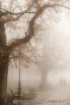 fotograf płock warszawa zdjęcia mgła ulice miasta miasto we mgle