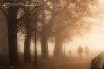 mgła płock zdjęcia fotograf Piotr Augustyniak
