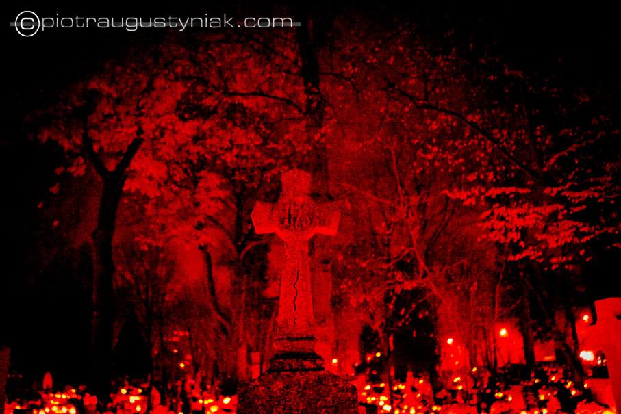 krzyż groby polski cmentarz wszystkich świętych zdjęcia